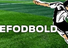 Skolefodbold.fw